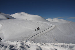 IMG_6526 スキーヤー s.jpg