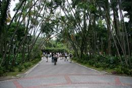 IMG_9325 植物園.jpg