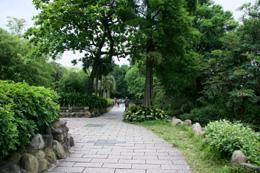 IMG_9327 植物園 s.jpg